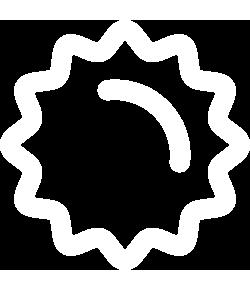 stella analisi